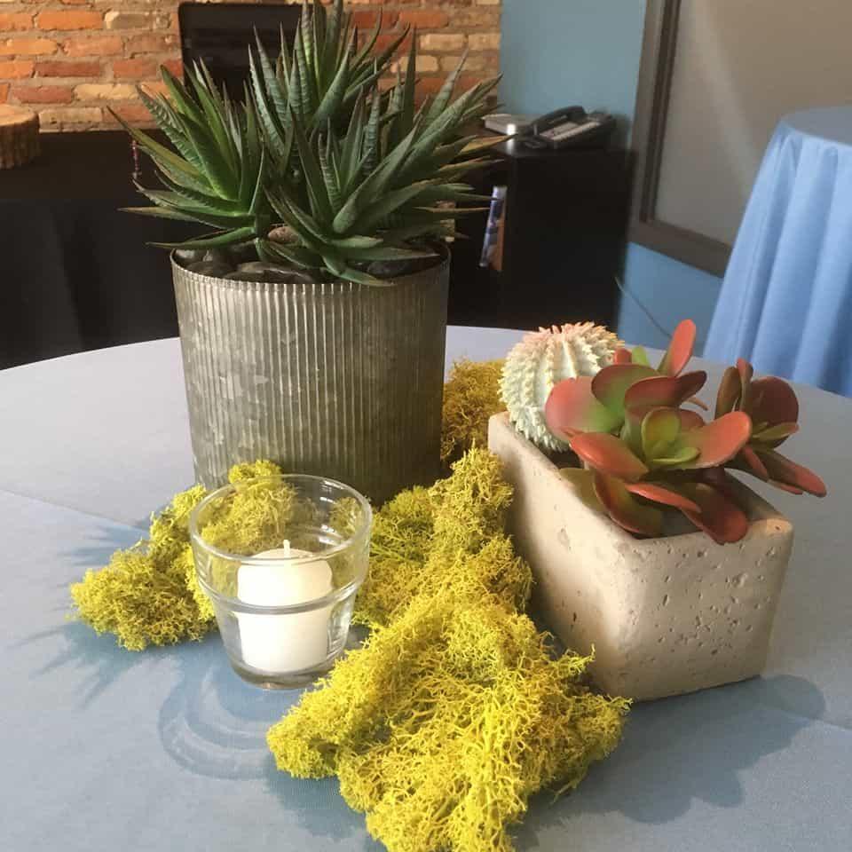 Grand Rapids Wedding Rentals: The Plant Professionals